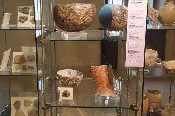 museo ridola 2