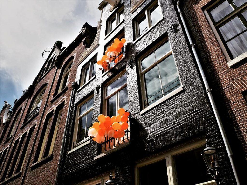 5 причин поселить нидерланды