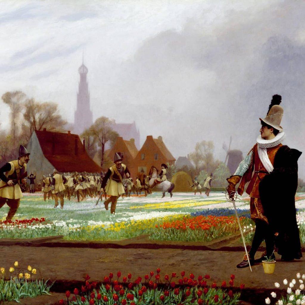 тюльпаны в голландии история